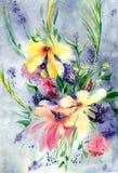 Fond d'aquarelle avec des wildflowers de ressort Image stock