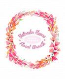 Fond d'aquarelle avec un beau guirlande-cadre fait de fleurs roses Photo libre de droits