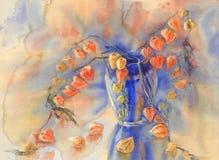 Fond d'aquarelle de bouquet de tomate de cosse Images stock