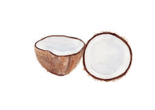 Fond d'aquarelle de lait de noix de coco Photographie stock