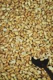 Fond d'arachides Photo stock