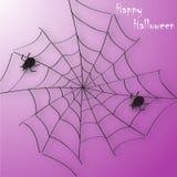Fond d'araignée de Halloween Photos libres de droits
