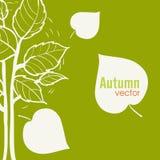 Fond d'arbre d'automne Photographie stock libre de droits