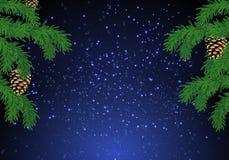 Fond d'arbre de sapin de Noël au-dessus de ciel bleu magique avec des étoiles Image stock