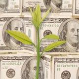 Fond d'argent Photos libres de droits