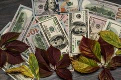 Fond d'argent liquide, cent dénominations du dollar Photographie stock
