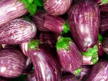 Fond d'aubergine Images stock