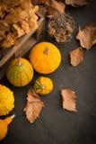 Fond d'automne Images stock