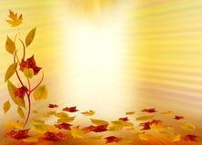 Fond d'automne Photographie stock