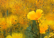 Fond d'automne. Photo libre de droits