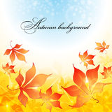 Fond d'automne Images libres de droits