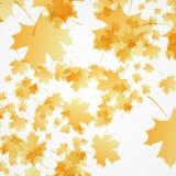 Fond d'automne illustration libre de droits
