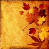Fond d'automne illustration stock