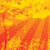 Fond d'automne avec des arbres illustration libre de droits