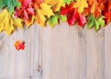 Fond d'automne avec des feuilles d'automne d'érable sur le fond en bois Photo libre de droits