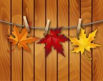 Fond d'automne avec des feuilles Photo stock