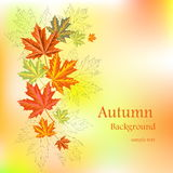 Fond d'automne avec des feuilles Image stock