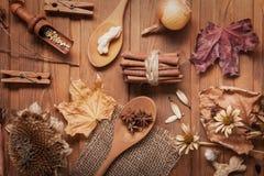 Fond d'automne avec des fruits et des épices avec le plac sec de fleurs Image libre de droits