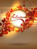 Fond d'automne avec des lumières EPS10 plus Photo stock