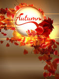 Fond d'automne avec des lumières EPS10 plus Image stock