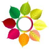Fond d'automne avec le cadre et les feuilles ronds illustration libre de droits