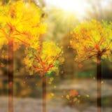 Fond d'automne avec le fond d'arbres illustration stock