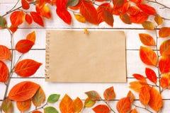 Fond d'automne avec les branches et les feuilles automnales colorées, fin de support photo stock