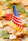 Fond d'automne avec les feuilles colorées en gros plan photos libres de droits