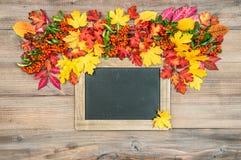 Fond d'automne avec les feuilles et le tableau noir Texture en bois Images stock