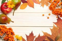 Fond d'automne avec les lames colorées sur le panneau en bois Vue supérieure Image stock