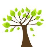Fond d'automne de vecteur avec l'arbre Photos libres de droits
