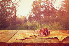 Fond d'automne des feuilles tombées au-dessus du backgrond en bois de table et de forêt avec la fusée et le coucher du soleil de  Photographie stock