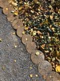 Fond d'automne feuilles tombées des arbres Humeur d'automne - tristesse légère photos libres de droits