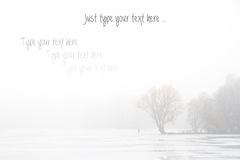 Fond d'automne/hiver pour votre texte Images stock