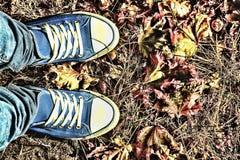 Fond d'automne Jambes d'une jeune femme dans espadrilles bleues Photos libres de droits