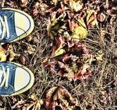 Fond d'automne Jambes d'une jeune femme dans espadrilles bleues Photographie stock libre de droits