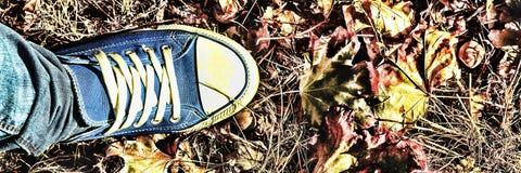 Fond d'automne Jambes d'une jeune femme dans espadrilles bleues Image stock