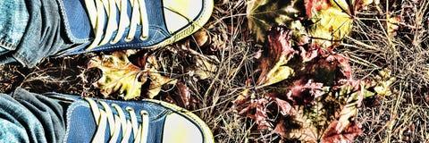 Fond d'automne Jambes d'une jeune femme dans espadrilles bleues Image libre de droits
