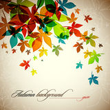 Fond d'automne | Lames en baisse Photo stock