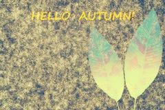 Fond d'automne pour la conception Photographie stock