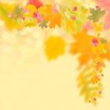 Fond d'automne pour la conception illustration libre de droits