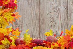 Fond d'Autumn Leaves et de pommes Image libre de droits