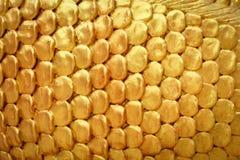 Fond d'or avec l'espace images stock