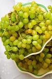 Fond d'avoine. nourriture végétarienne Photographie stock