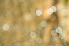 Fond d'or d'étincelle Photo libre de droits