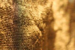 Fond d'or de réseau   Images stock