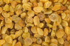 Fond d'or de raisins secs Images libres de droits