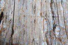 Fond d'en bois Images stock