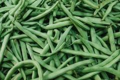 Fond d'haricots verts Produits locaux naturels sur le marché de ferme Moisson Produits saisonniers Nourriture légumes Image libre de droits
