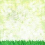 Fond d'herbe de vecteur Photographie stock